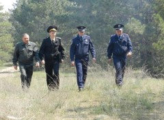 Наземные патрули в лесничествах на 272 маршрутах общей протяженностью 10878 км