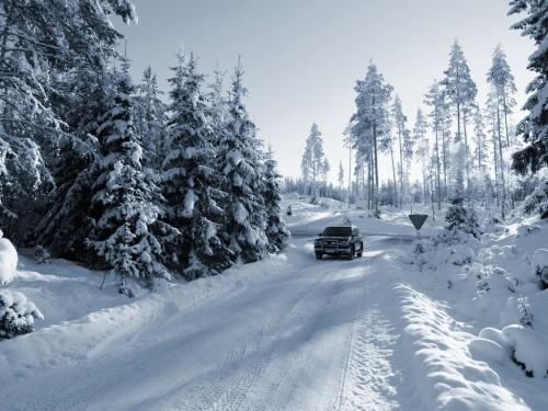 Авто на зимней лесной дороге