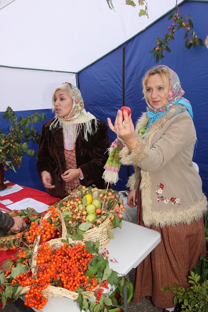 IMG_6394 яблоки выросли в Ботан-саду СГУ
