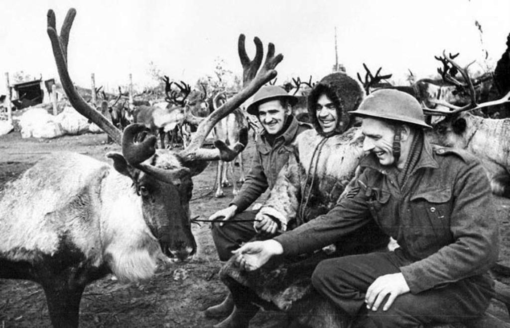 Так вот ты какой, северный олень! Известный военный фотокорреспондент Евгений Халдей в 1942 году запечатлел, как английские союзники рассматривают оленью упряжку, доставившую боеприпасы на аэродром.