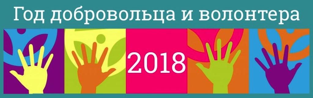 Год добровольца-2018